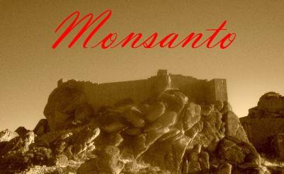 000-2009-04-00-monsanto-_0012_.jpg
